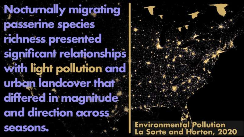Less light, more trees assist migrating birds