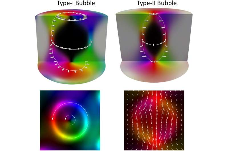 Magnetic nature of complex vortex-like structures in a Kagome crystal Fe3Sn2