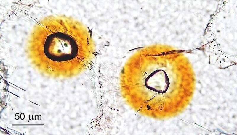 Mineral undergoes self-healing of irradiation damage