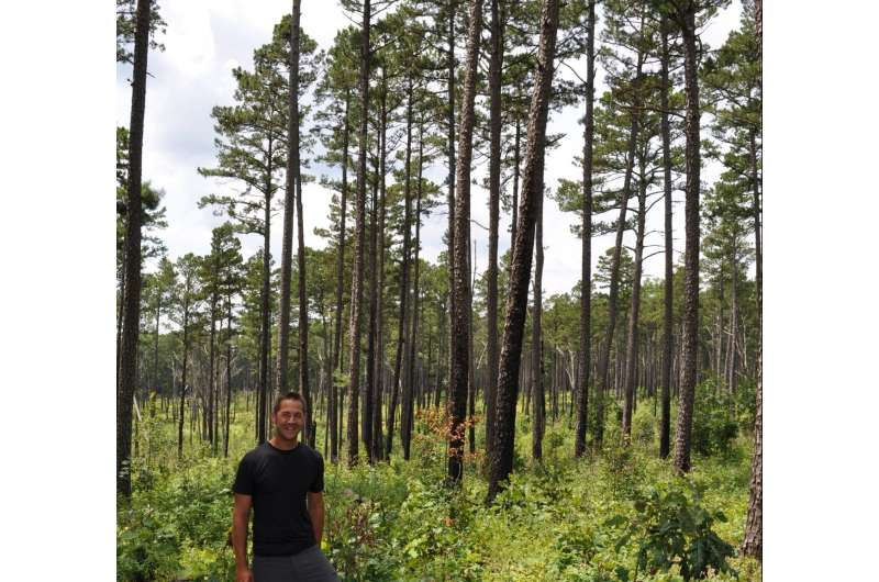 Nature's soundtrack returns after centurylong absence