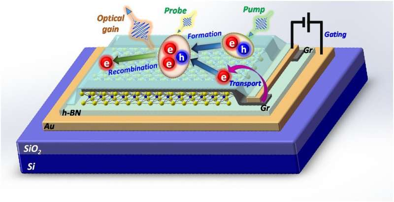 New mechanism of optical gain in two-dimensional material requires only extremely low input power