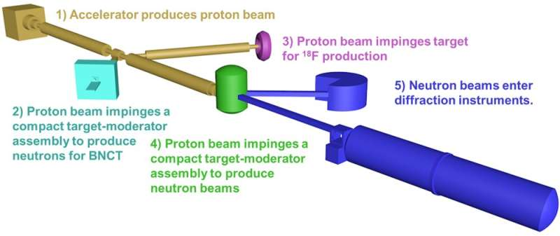 New neutron source in Canada would spur innovation, medical treatments