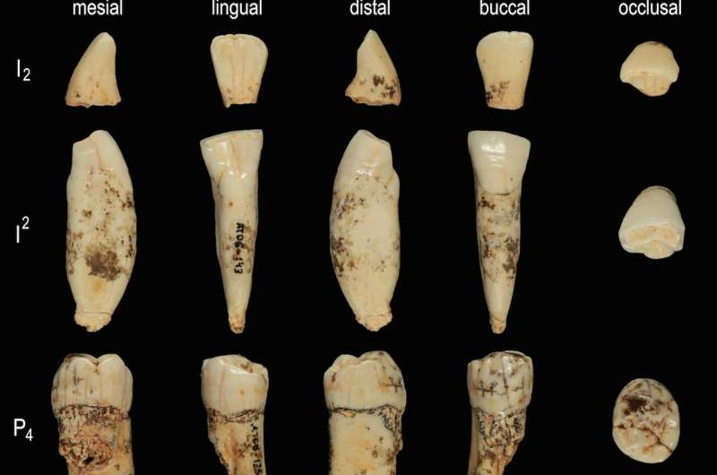 Oldest ever human genetic evidence clarifies dispute over our ancestors