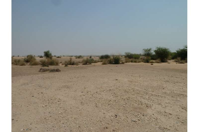 Oldest securely dated evidence for a river flowing through the Thar Desert, Western India
