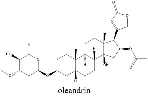 Oleandrin is a deadly plant poison, not a COVID-19 cure