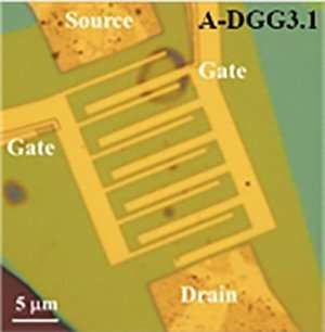 Paving the way for tunable graphene plasmonic THz amplifiers
