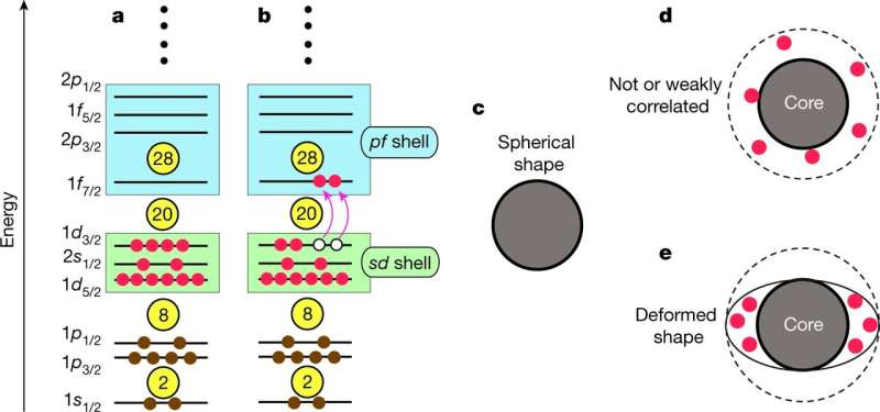 Physicists suggest mechanism responsible for the neutron drip line is related to deformation