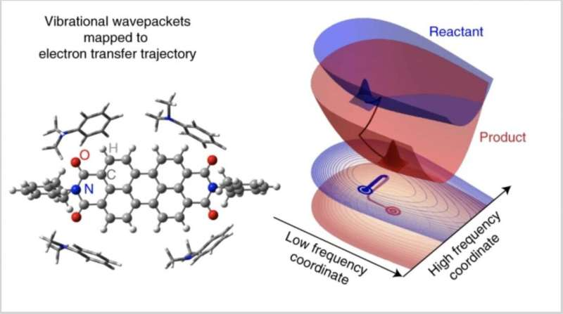 Princeton Chem reports role of quantum vibrations in electron transfer
