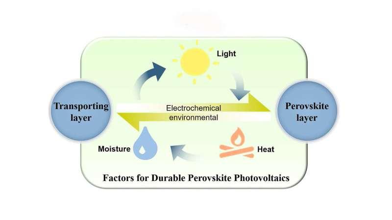 Promising strategies for durable perovskite solar cells
