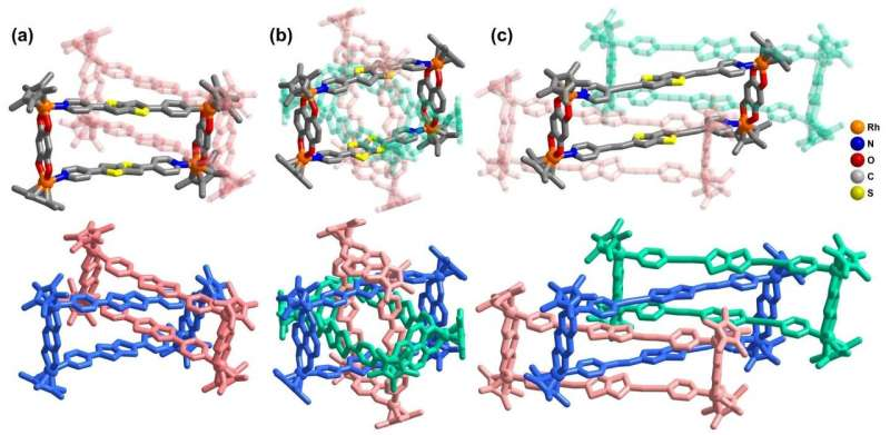 """""""All-in-one"""" strategy for metalla[3]catenanes, borromean rings and ring-in-ring complex"""
