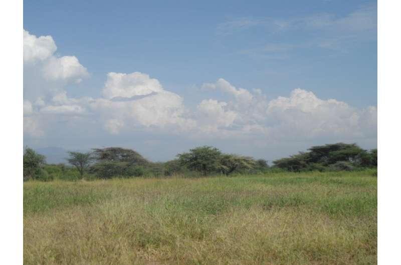 Restoration of degraded grasslands can benefit climate change mitigation and key ecosystem services