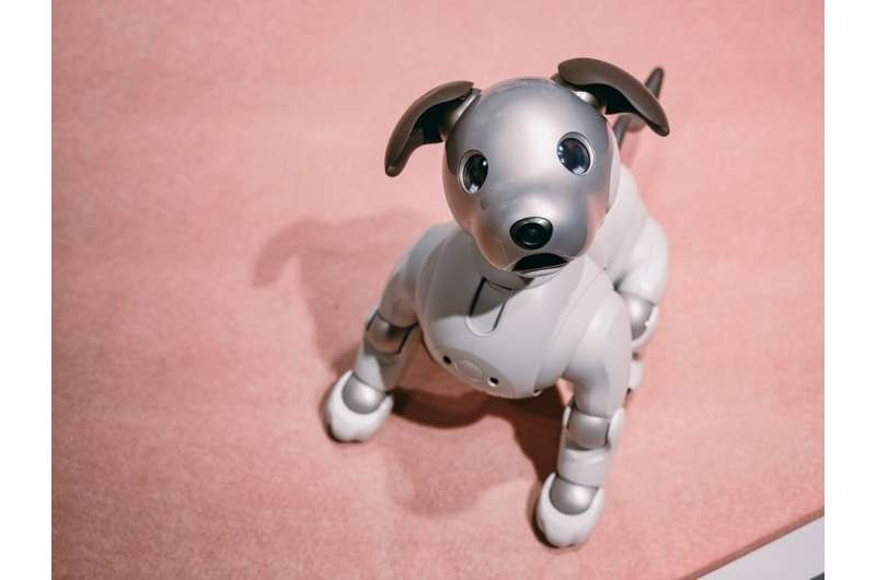 Robopets: Using technology to monitor older adults raises privacy concerns