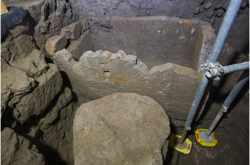 Roman Forum find could be shrine to Rome's founder, Romulus