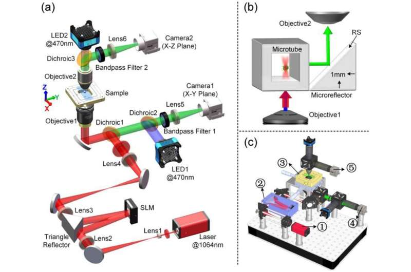 Scientists Solve Simultaneous Optical Trapping and Imaging In The Axial Plane For Light-matter Interaction