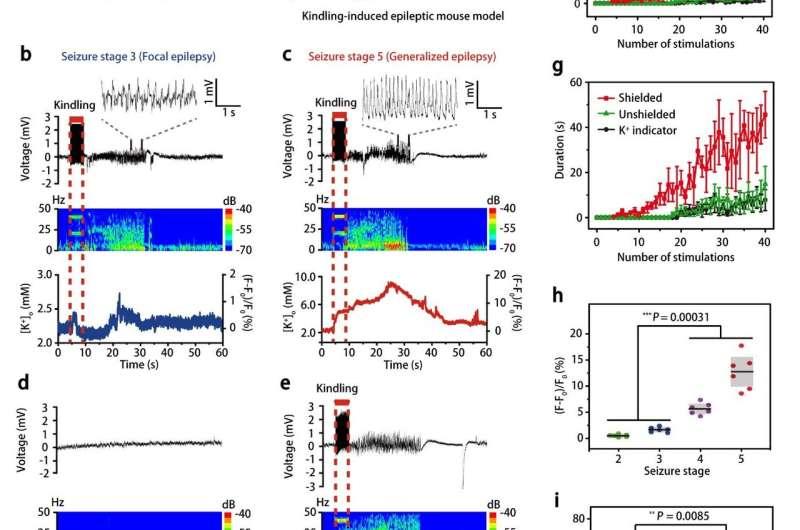 Sensitive and specific potassium nanosensors to detect epileptic seizures