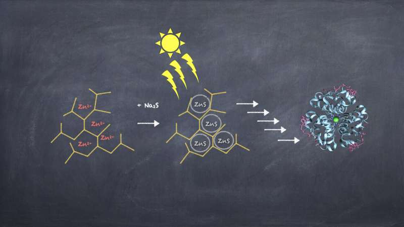 Small enzyme-mimicking polymers may have helped start life