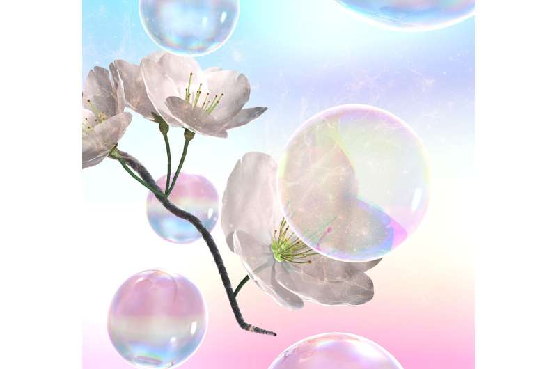 Soap bubbles pollinated a pear orchard without damaging delicate flowers