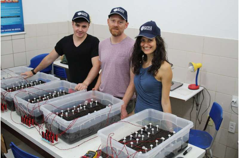 Soil-powered fuel cell promises cheap, sustainable water purification