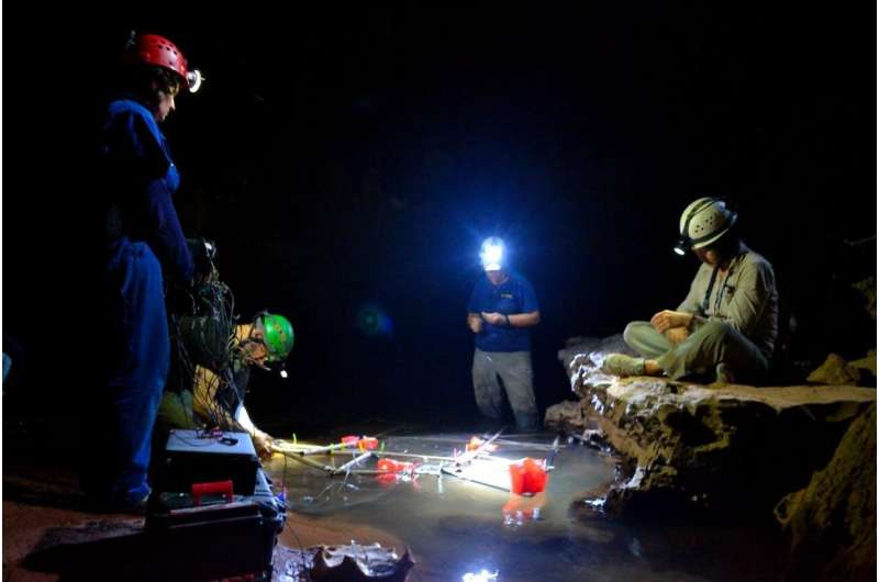 'Spooky Interactions', shocking adaptations discovered in electric fish of Brazil's Amazon