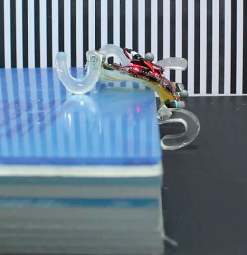 SQuad: a miniature robot that can walk and climb obstacles