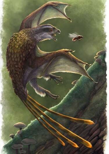 Studying pterosaurs and other fossil flyers to better engineer manmade flight