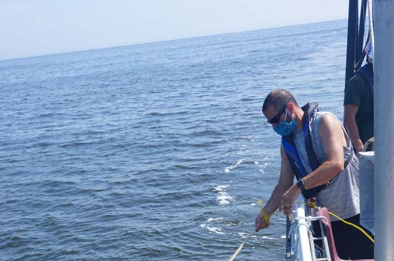 Study proves bits of DNA in seawater correlate to the weight of netted fish