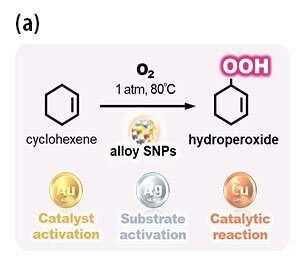 Sub-nanoparticle catalysts made from coinage elements as effective catalysts