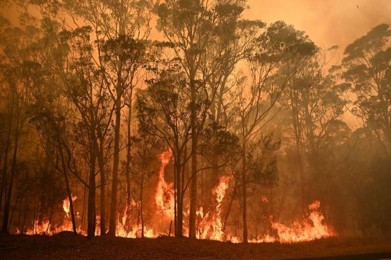 Temperatures have soared above 40 degrees Celsius (104 Fahrenheit) in Australia, and gale-force winds have fanned hundreds of fi