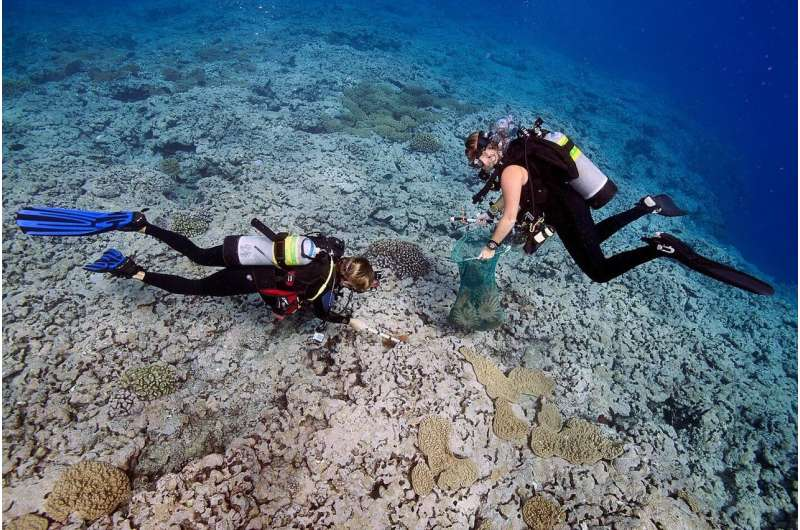 The health of coral reefs in the largest marine protected area in the world