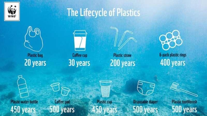 The many lifetimes of plastics