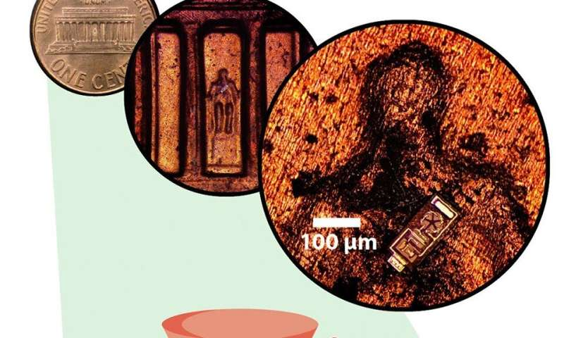 Tiny sensors fit 30,000 to a penny, transmit data from living tissue