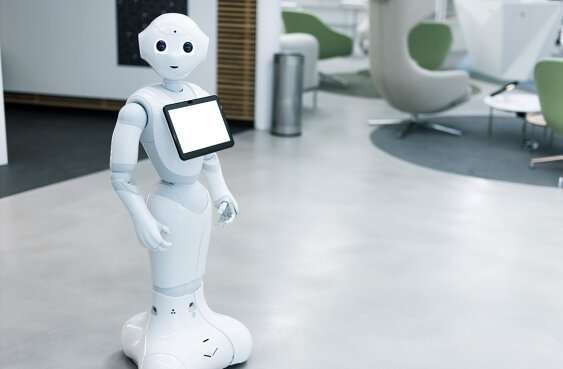 To the future: finding the moral common ground in human-robot relations