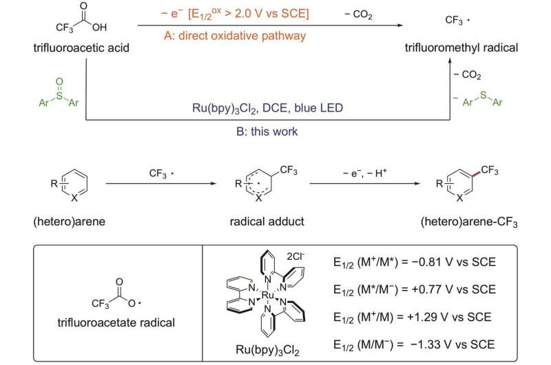 Trifluoroacetic acid acts as trifluoromethylating agent in arene C-H functionalization
