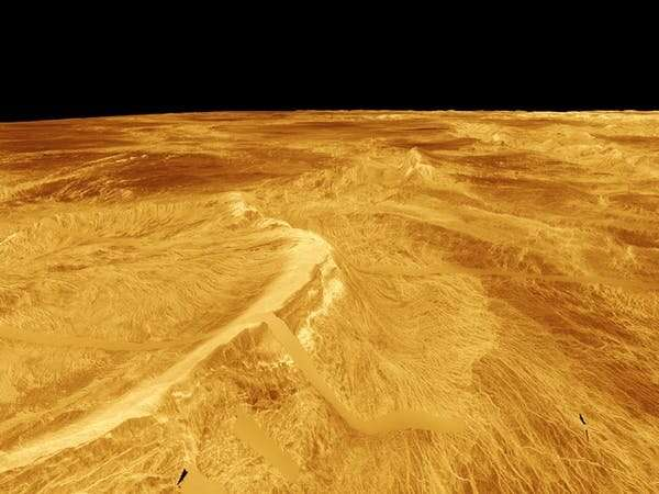 Venus: could it really harbour life? New study springs a surprise
