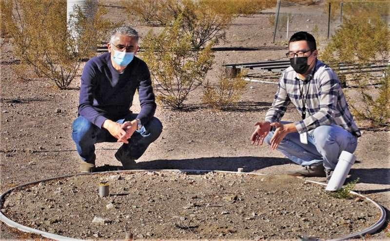 What happens when rain falls on desert soils? An updated model provides answers