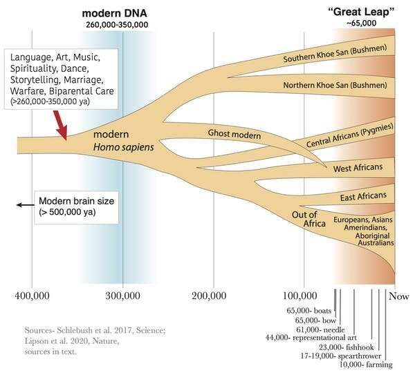 When did we become fully human? What fossils and DNA tell us about the evolution of modern intelligence