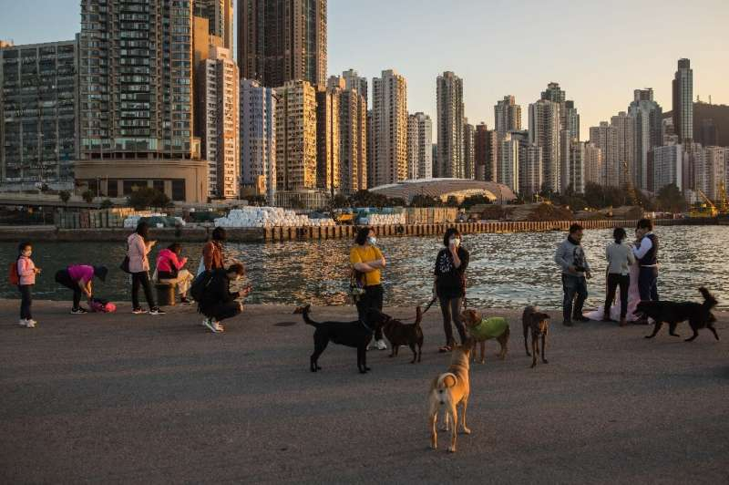 While there is no evidence animals such as dogs and cats can transmit the virus to humans, Hong Kong authorities say pets of inf