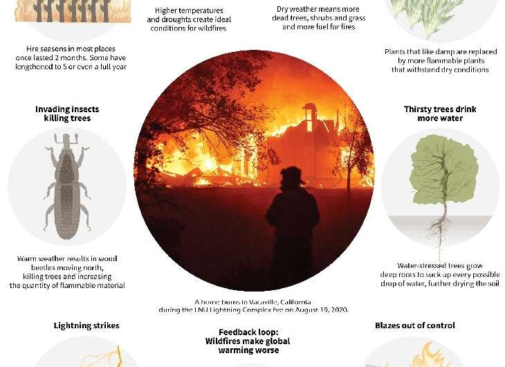 How climate change can make wildfires worse