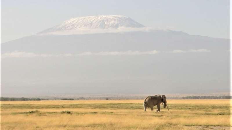 Climate change exacerbates biodiversity loss
