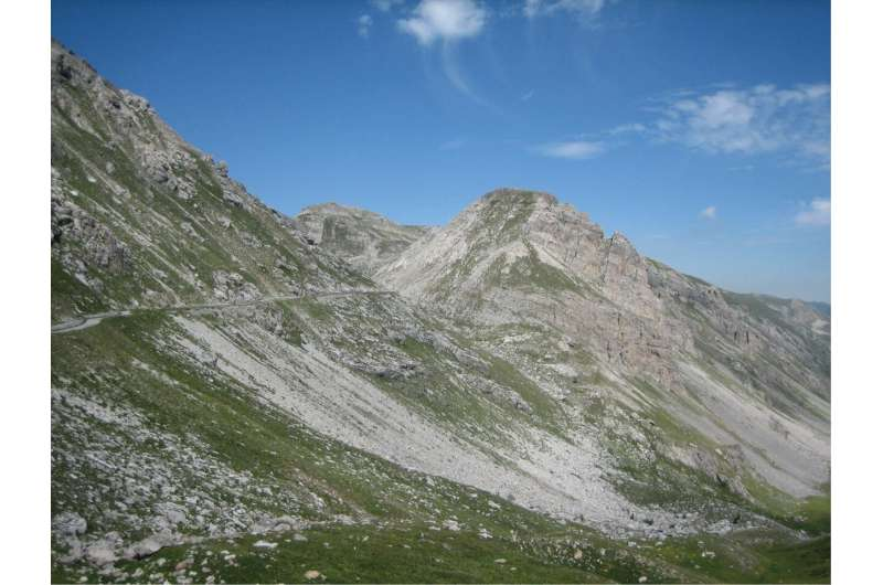New species of moths discovered in the Alps named after three famous alpinists