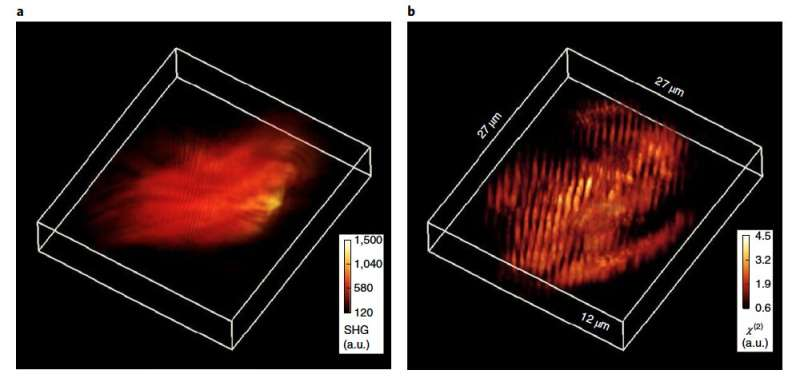 New technique takes 3-D imaging an octave higher