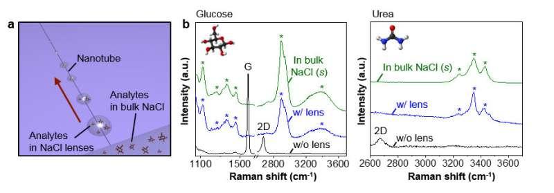 New study presents hygroscopic micro/nanolenses along carbon nanotube ion channels