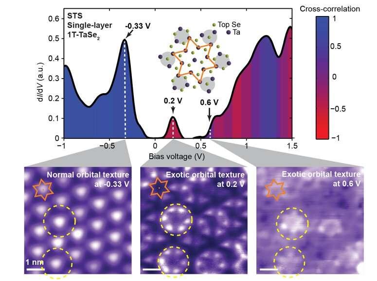 Researchers discover a unique orbital texture in single-layer 1T-TaSe2