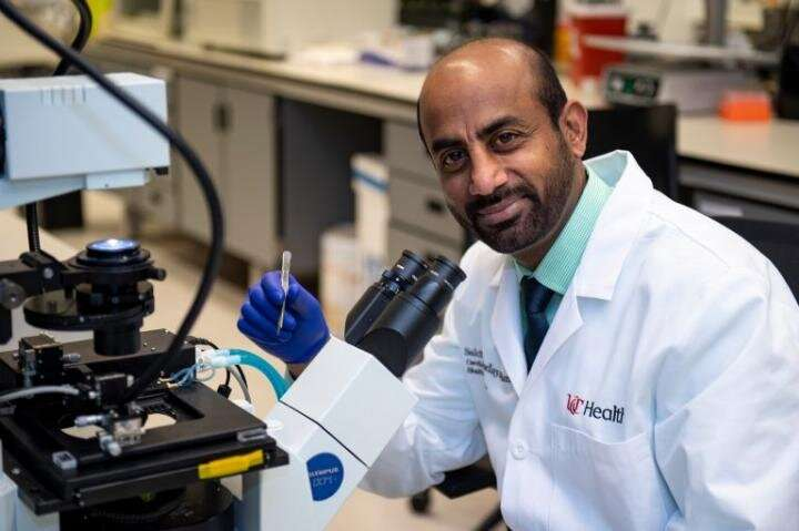 University of Cincinnati researchers look at how COVID-19 affects the heart