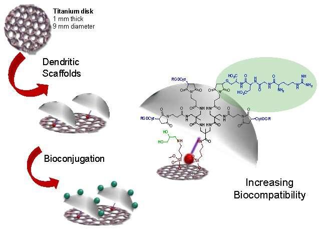 Development of a 3-D titanium-based structure to improve bone implants
