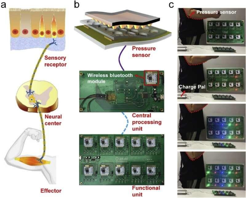Researchers Propose Flexible Pressure Sensor for Human-machine Interaction