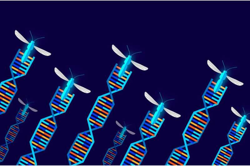 Scientists set a path for field trials of gene drive organisms
