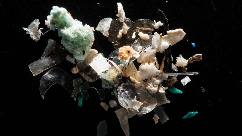 Researchers eye a system that uses marine microplastics to get rid of marine microplastics