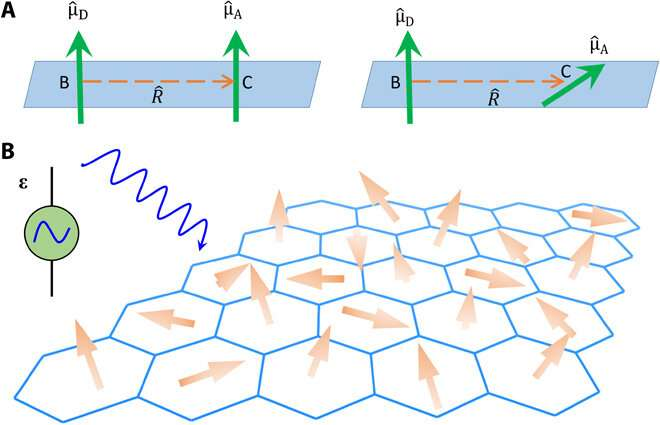 Shedding light on moiré excitons: A first-principles perspective