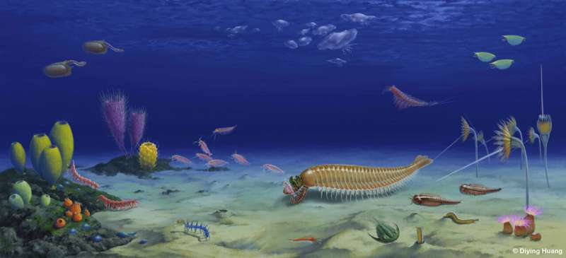 A 520-million-year-old five-eyed fossil reveals arthropod origin